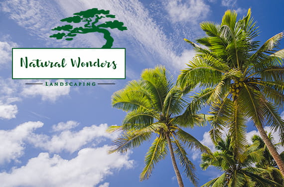 landscaping design and installation – Natural Wonders Landscaping 954-421-0108