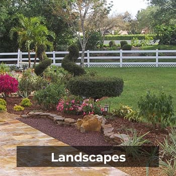 Landscapes – Natural Wonders Landscaping 954-421-0108